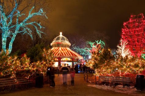 ... Lights Are Free, But If You Are Willing To Spend Some Money For  Tickets, Check Out Brookfield Zoo Where You Can Also See A Penguin Show.