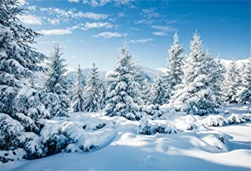 Top 12 Festive Things To Do This Winter Season
